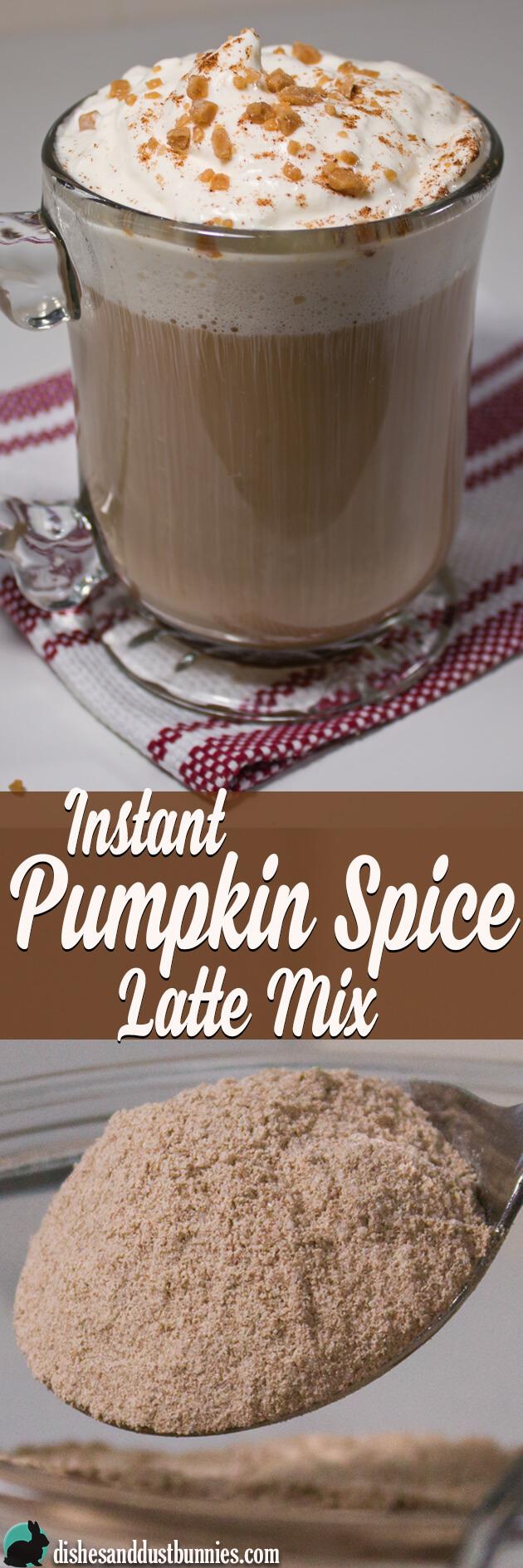 Homemade DIY Instant Pumpkin Spice Latte Mix from dishesanddustbunnies.com