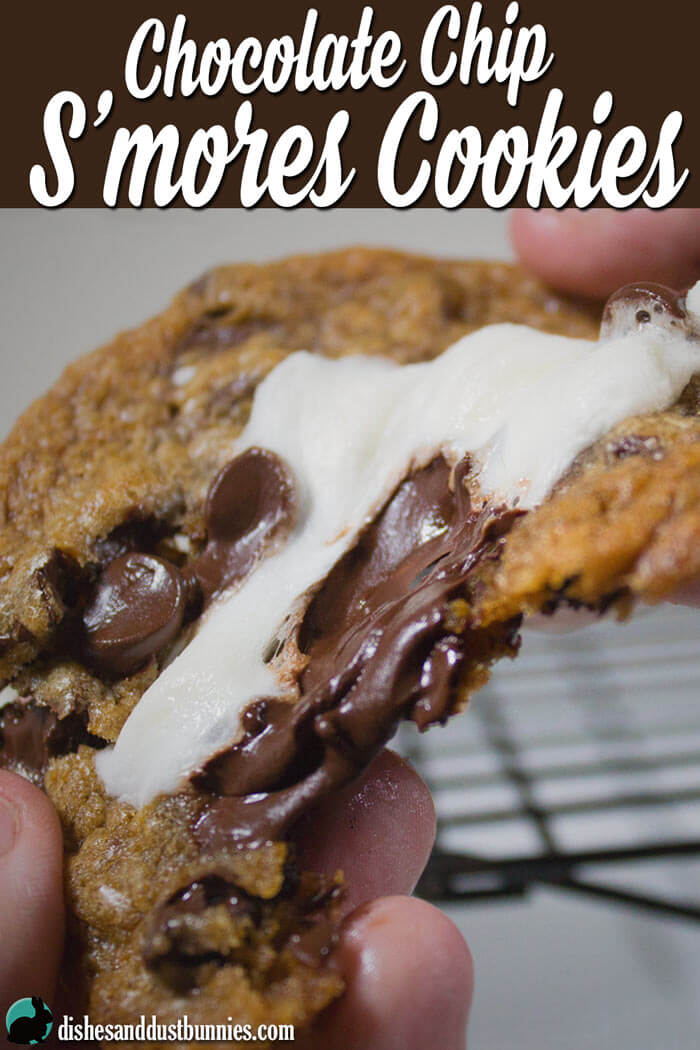 S'mores Cookies from dishesanddustbunnies.com