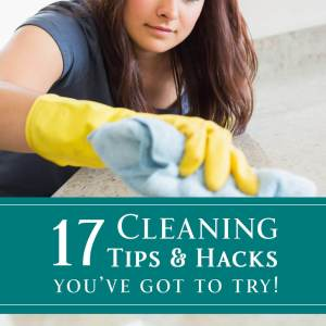 17 Cleaning Tips and Hacks You've Got to Try! from dishesanddustbunnies.com