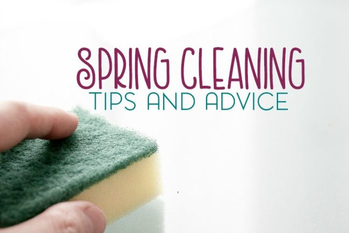 Spring Cleaning Tips and Advice for People Who Don't Like to Clean from Kori at Home