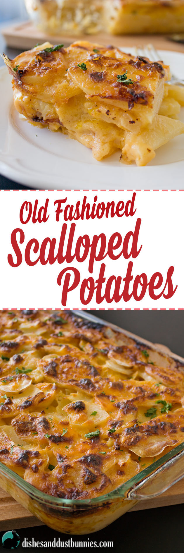 Old Fashioned Scalloped Potatoes from dishesanddustbunnies.com