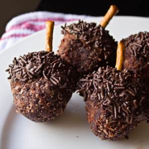 Chocolate Acorn Donut Holes from dishesanddustbunnies.com