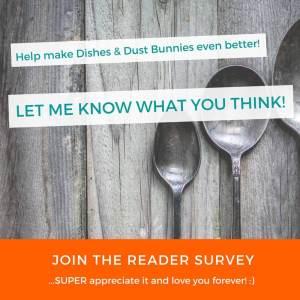 Help make Dishes & Dust Bunnies Even Better! (Reader Survey)