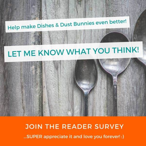 Help make Dishes & Dust Bunnies Even Better! (Reader Survey)