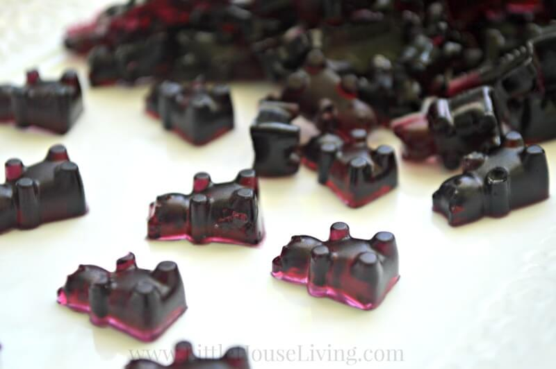How to Make Blueberry Gummies from Little House Living