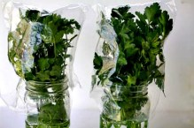 Store fresh herbs in the refrigerator in a glass/or any container of water Change the water every 2 days. Herbs can stay fresh up to 14 days.
