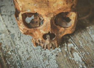 La Inquisición española frente a los excesos del Calvinismo