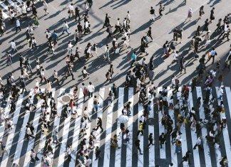 El estrés crónico de la modernidad y el cambio de paradigma