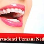ortodonti uzmanı nedir
