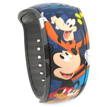 Lots Of Magicbands Released Online