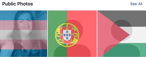 screenshot of some flag filter options on Facebook