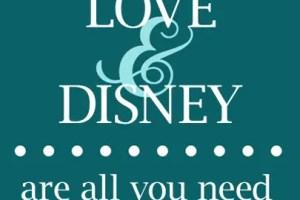 Disneyland Honeymoon Options/Ideas? 13