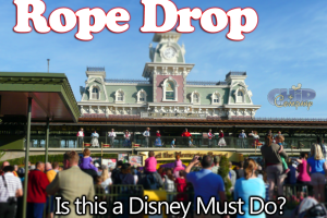 Is it worth getting up early to see Rope Drop at Magic Kingdom? 7