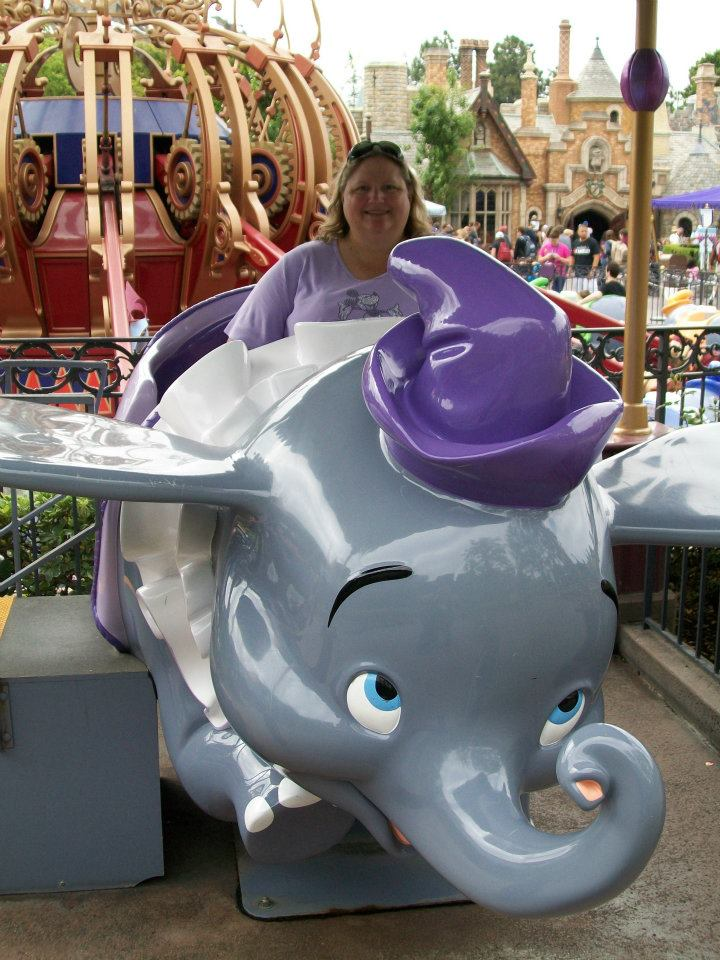 Are Disneyland Resort rides accessible for larger (weight or height) people?