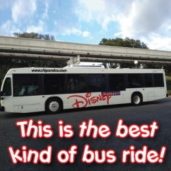 Do I Need to Bring a Car Seat for Transportation to the Disney Parks?