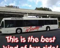 wdw bus