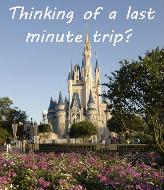 Are there any specials for a last minute trip to Disney?