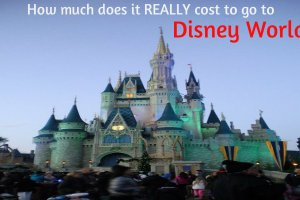 How much does it REALLY cost to go to Disney World? 11
