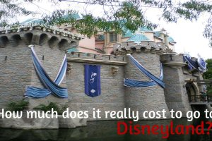 How much does it REALLY cost to go to Disneyland? 3
