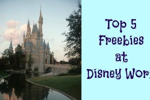 Disney World Freebies