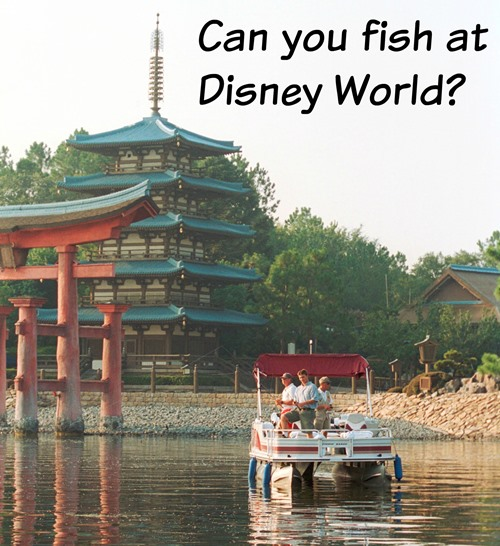 Can you fish at Disney World?