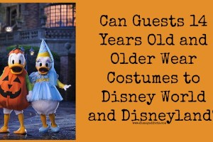 Can Guests 14 Years Old and Older Wear Costumes to Disney World and Disneyland? 18