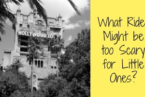What Disney World Rides Might be too Scary for Little Ones? 19