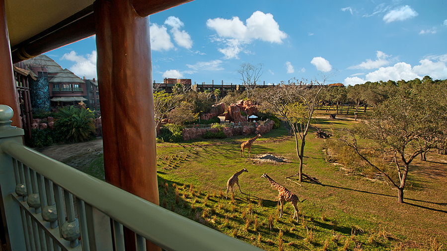 What I Loved about my Stay at Disney's Animal Kingdom Lodge