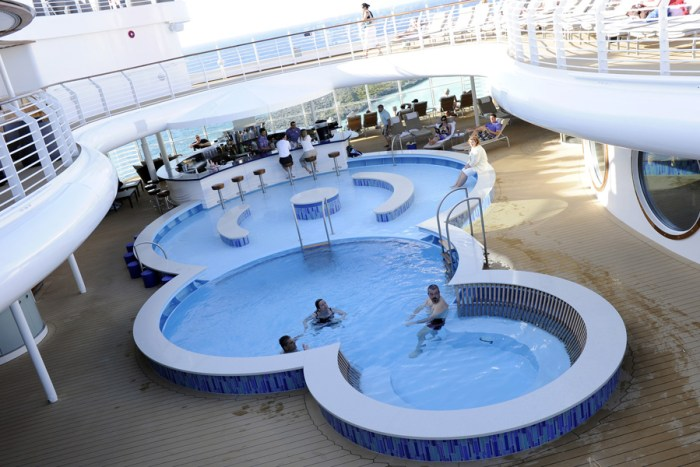 Adults Disney Cruise