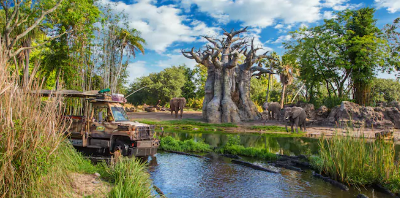 Disney's Animal Kingdom Park Guests can Connect with Nature for Earth Day