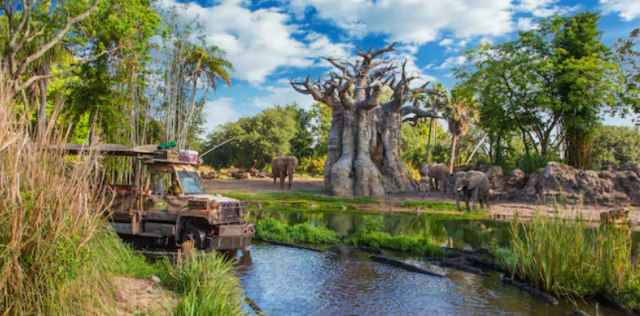 Top 10 Disney World Attractions for Adults 8