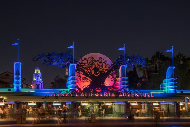 13 Disneyland Photos