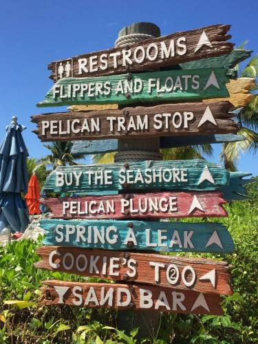 Relax or Play on Disney's Castaway Cay 2