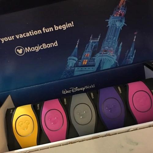 Free Souvenirs at Walt Disney World? 1