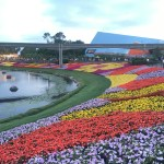Epcot's International Flower & Garden Festival Must Do List