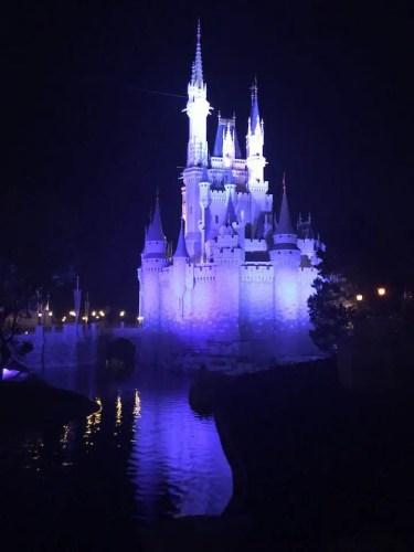 Cinderlella Castle reflection