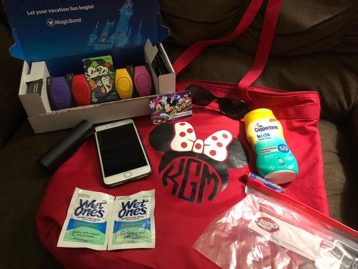 What are the Essentials in Your Disney Park Bag?