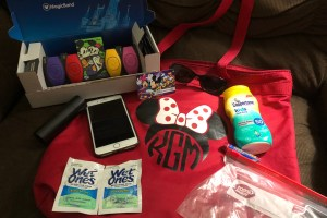 What are the Essentials in Your Disney Park Bag? 45
