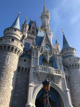 How Do You Propose at Walt Disney World? 3