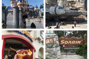 Tips for Staying Cool at the Disneyland Resort 106