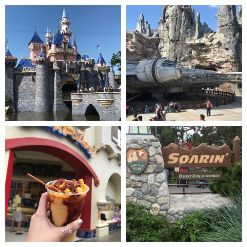 Tips for Staying Cool at the Disneyland Resort 1