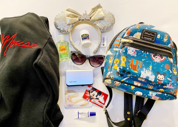 What to Pack in Your Disney Parks Bag 4