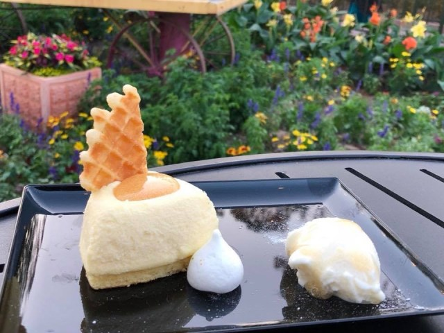Top 4 Reasons To Go See Epcot's International Flower and Garden Festival 4