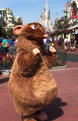 """Celebrating Pixar's Ratatouille and the Upcoming """"Remy's Ratatouille Adventure"""" Attraction 11"""