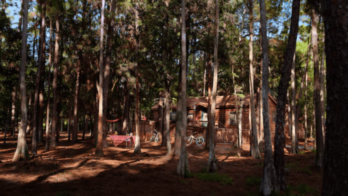 Top 5 Reasons to Stay at Disney's Fort Wilderness Resort 6