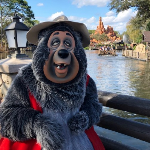 The Country Bear Jamboree: Honoring a Classic Disney Attraction 6