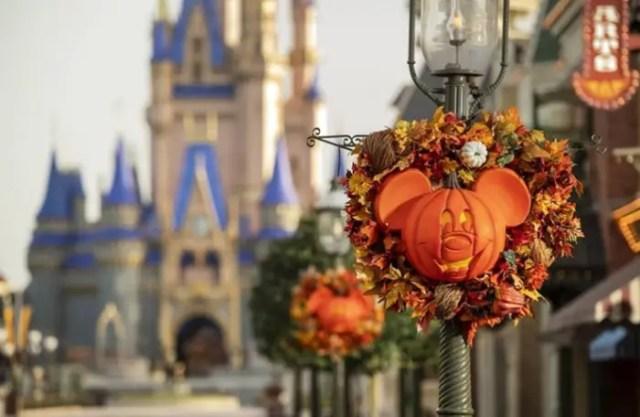 Disney visit during Fall