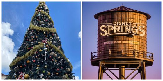 5 Ways to Celebrate the Holidays at Disney Springs 1