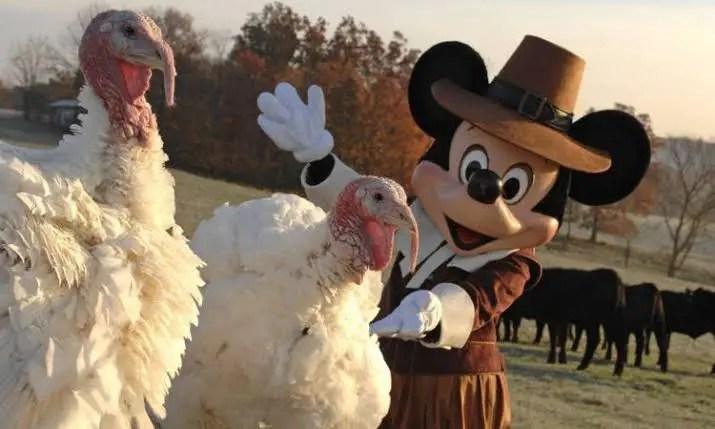 Disney Chefs Share Thanksgiving Day Turkey Tips