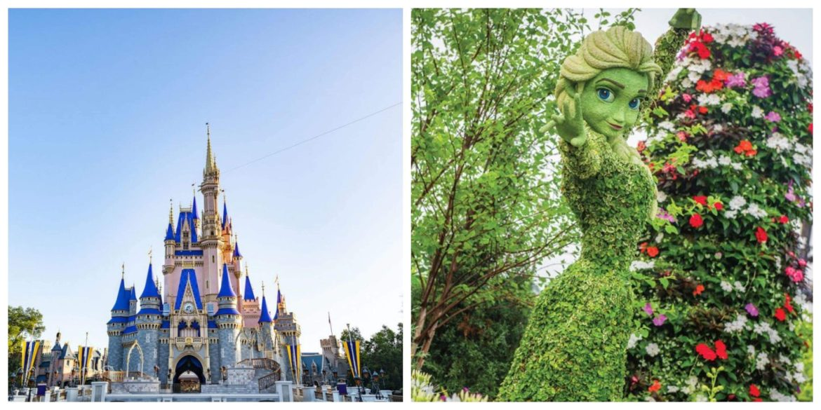 21 Reasons To Visit Walt Disney World In 2021!